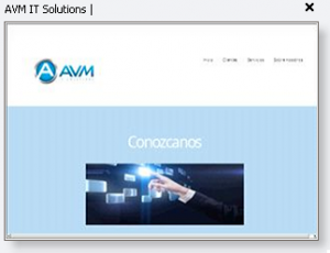 AVM It Solutions